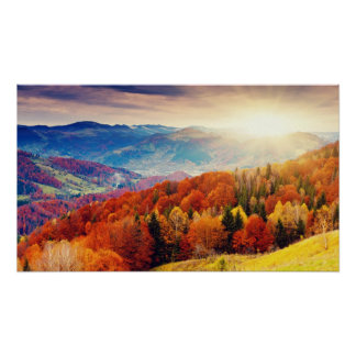 Mountain autumn forest landscape poster