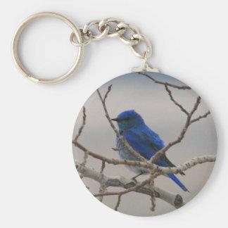 Mountain Blue Bird Key Ring