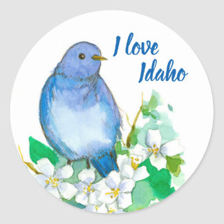 Mountain Bluebird I Love Idaho Classic Round Sticker