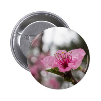 Mountain Cherry Blossom Round Button