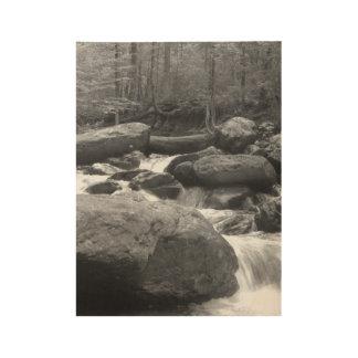 Mountain Creek Wood Poster