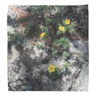 Mountain Flowers Bandana