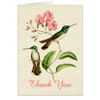 Mountain Gem Hummingbird Thank You Greeting Card