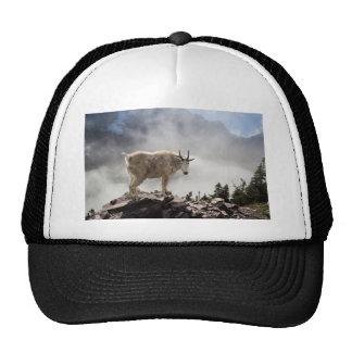 Mountain Goat on Gunsight Pass Trail Cap