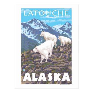 Mountain Goats Scene - Latouche, Alaska Postcard