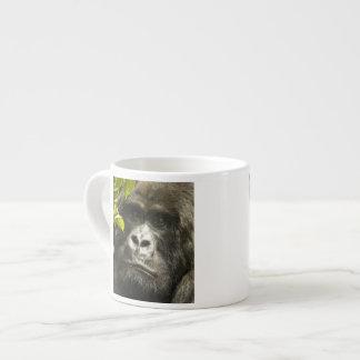 Mountain Gorilla, Gorilla beringei beringei, Espresso Cup