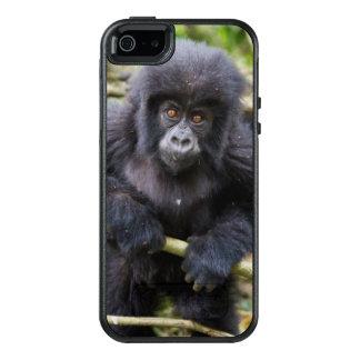 Mountain Gorilla (Gorilla Beringei Beringei) OtterBox iPhone 5/5s/SE Case