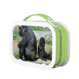 Mountain Gorillas Lunchbox