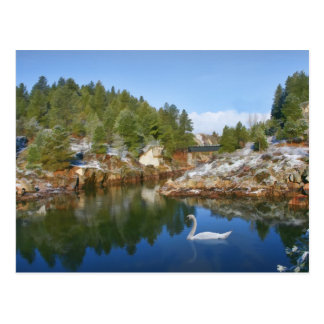 Mountain Lake, Swan, Reflections Postcard