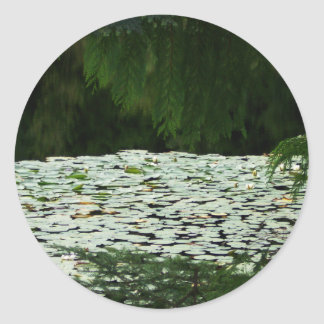 Mountain Lake Water Lilies Round Stickers