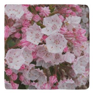 Mountain Laurel Floral Stone Trivet