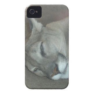 Mountain Lion Case-Mate iPhone 4 Case