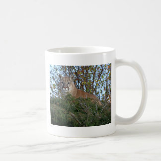 Mountain Lion on the Lookout Coffee Mug