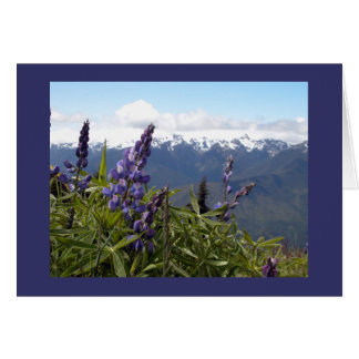Mountain Lupine Card