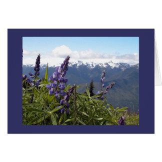 Mountain Lupine Card