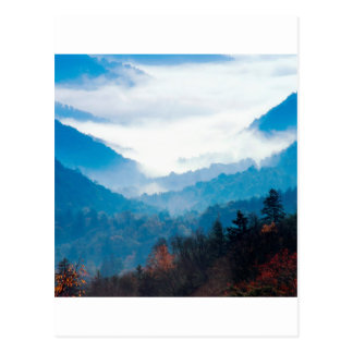 Mountain Newfound Gap Great Smoky Tennessee Postcard
