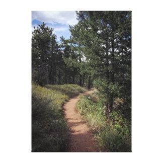 Mountain Path - Colorado Canvas Print