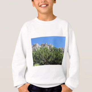Mountain pine against italian Dolomites mountains Sweatshirt