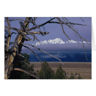 Mountain range in Grand Teton National Park Card