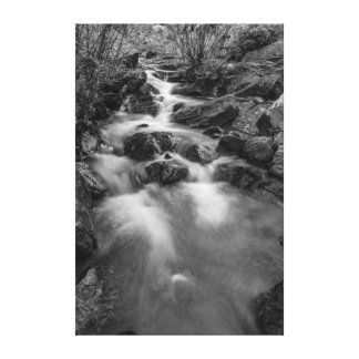 Mountain River Scene Canvas Print