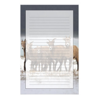 Mountain Sheep Family Stationery Design