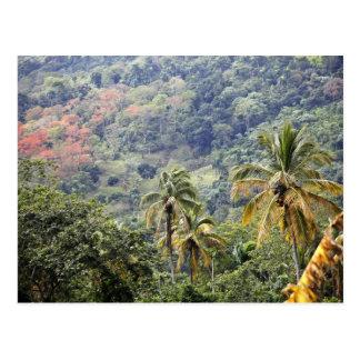 Mountain view, Dominican Republic. Postcard
