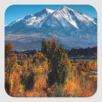 Mountain Warm Forest Cool Top Stickers