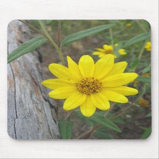 Mountain Wildflower Mousepad