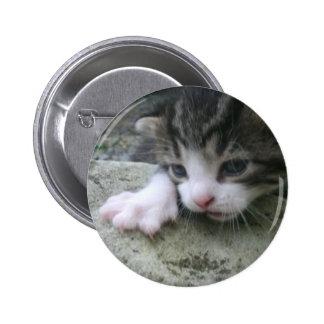 Mountaineer Kitten 6 Cm Round Badge