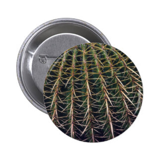 Mountains And Valleys On Cactus Button