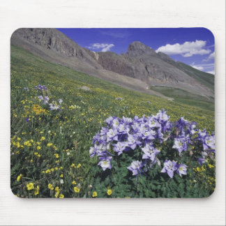 Mountains and wildflowers in alpine meadow, Blue Mousepads