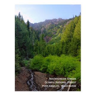 Mountainside Stream Postcard