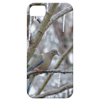 Mourning Dove Barely There iPhone 5 Case