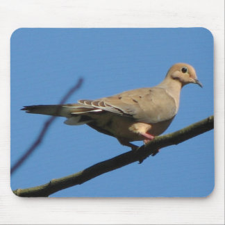 Mourning Dove Mousepad