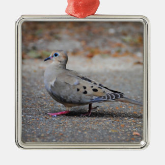 Mourning Dove Taking a Walk Silver-Colored Square Decoration
