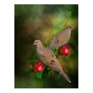 Mourning Doves on the Apple Tree - Painting Postcard