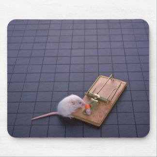 Mouse and trap mouse pad