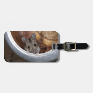 Mouse in a teapot bag tag