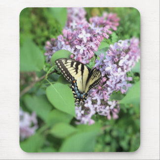 Mouse Pad - ET Swallowtail on Lilac