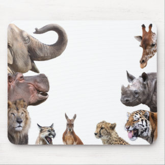 Mouse pad of animal