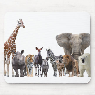 Mouse pad of animal of the world, No.06