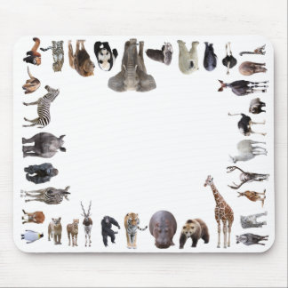 Mouse pad of animal of the world, No.08