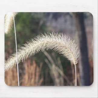 mouse pad photograph of swamp grass