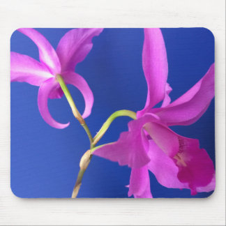 Mouse Pad, Pink Orchid Flowers Mouse Pad