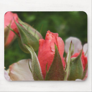 Mouse Pad: Rose Buds Mouse Pad