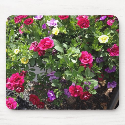 Mouse pad roses