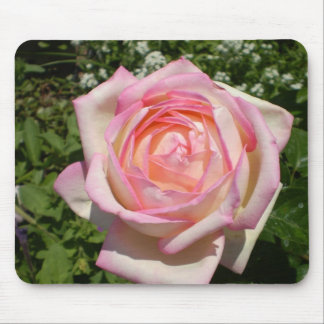Mouse pad, Roses, Roses...