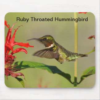 Mouse Pad Ruby throated hummingbird