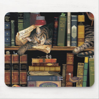 mouse pad w/ a cat sleeping in library books