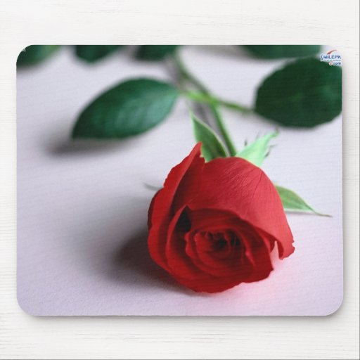 Mouse pad w/rose